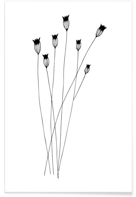 Sort & hvidt, Cornflowers Plakat