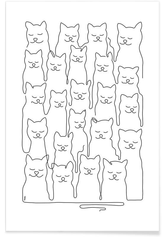 Noir & blanc, Catsss affiche