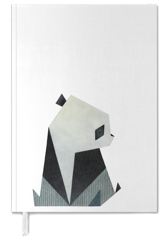 Kunst voor kinderen, Panda's, Panda 2 agenda