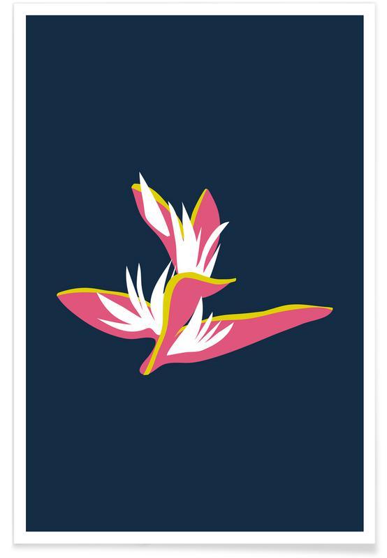 Feuilles & Plantes, Heliconia Illo Study affiche