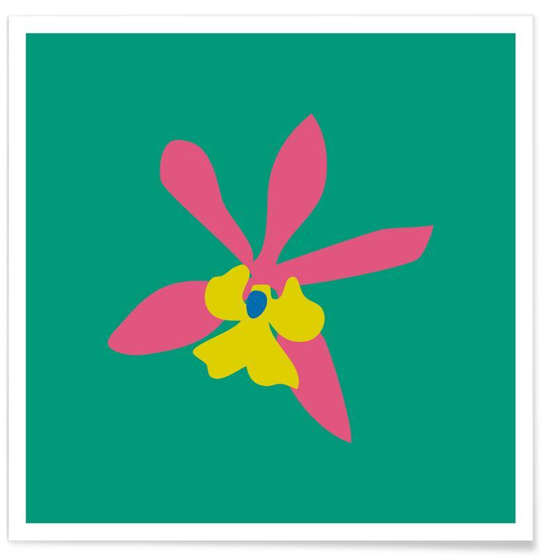 Feuilles & Plantes, Orchid Illo Study affiche