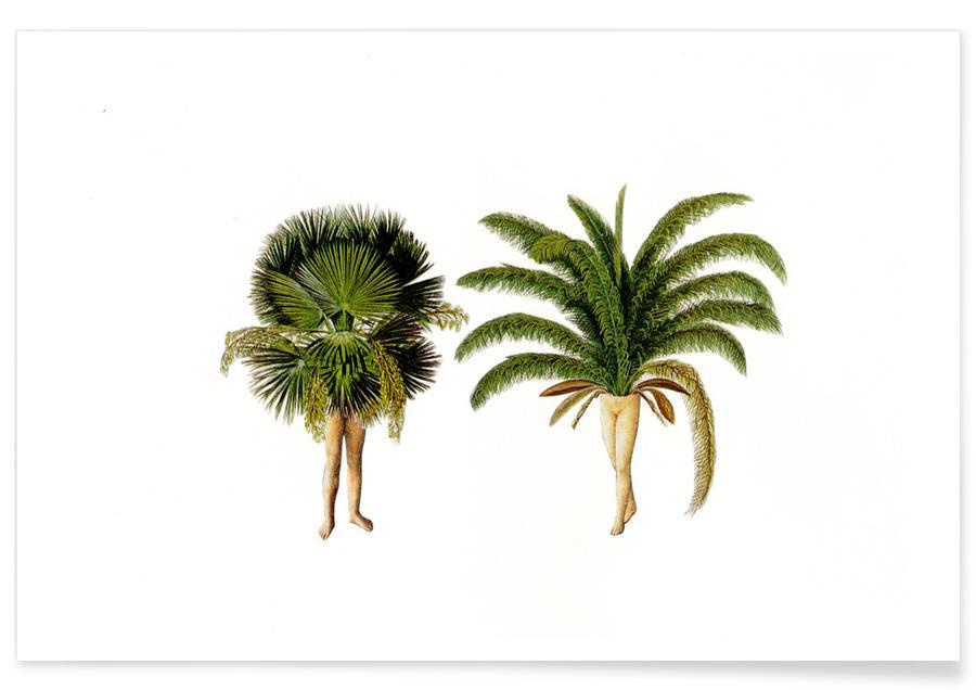 Palmen, Vintage, The Palms -Poster