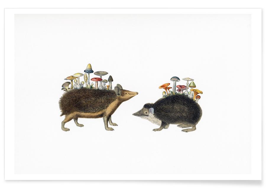 Retro, Hedgehog Shrooms poster