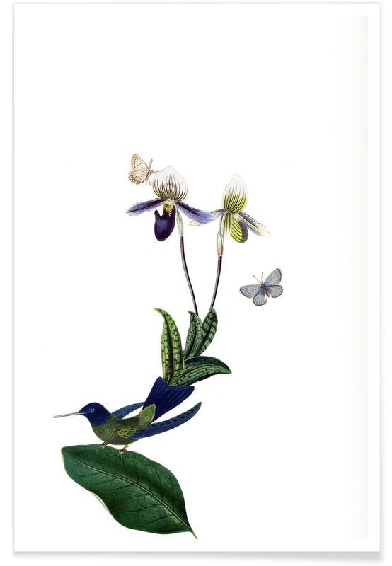 Retro, Bird of Paradise #21 poster