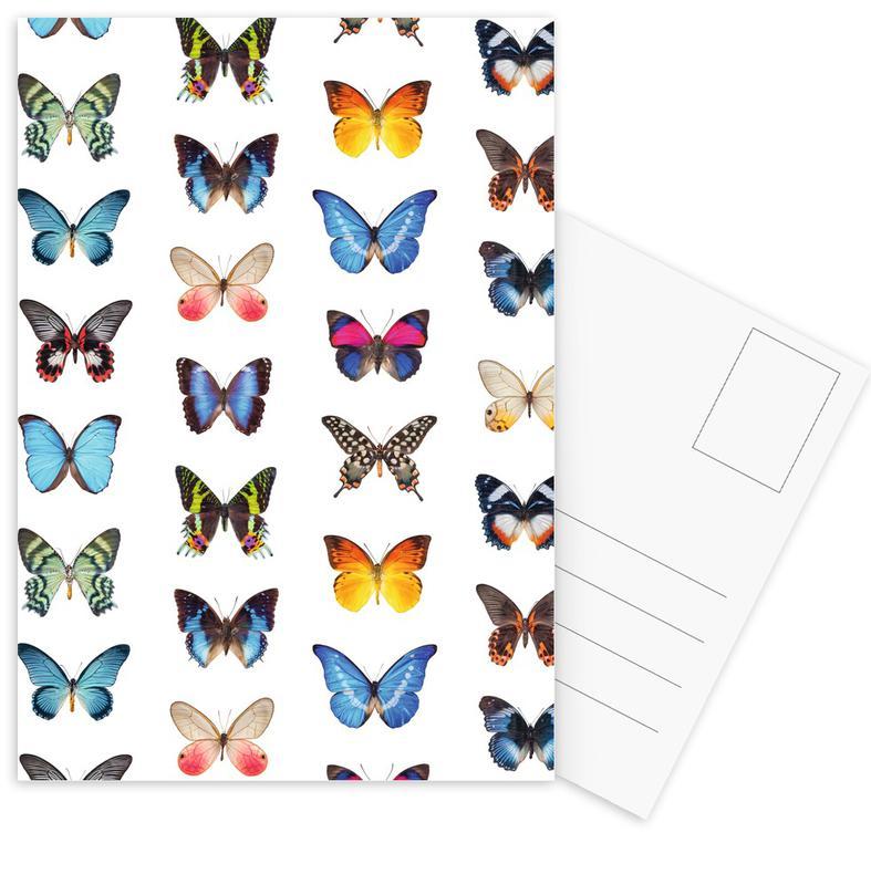 Colourful Butterflies Postcard Set