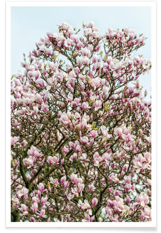 Magnolia Tree Pink -Poster