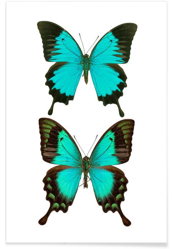 Papillons, Butterflies 1 affiche