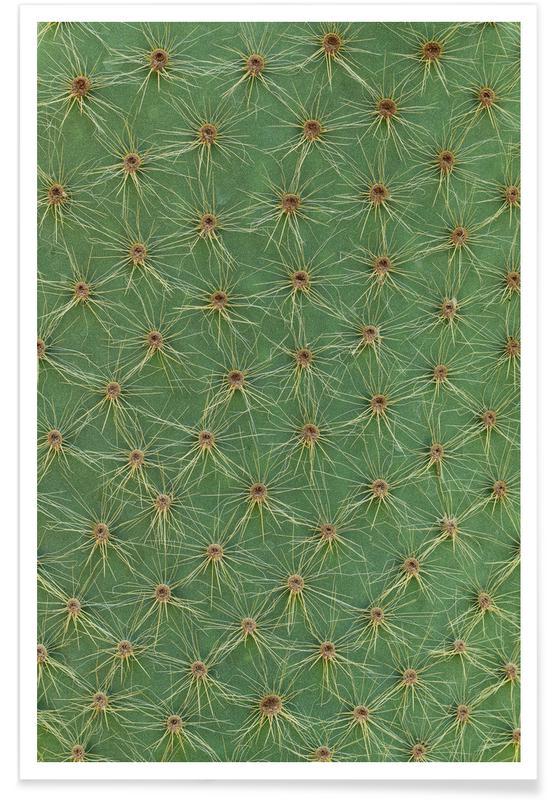 Cactussen, Cactus poster
