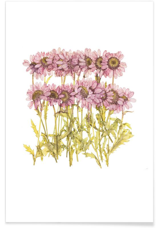 Madeliefjes, Dried Flowers poster