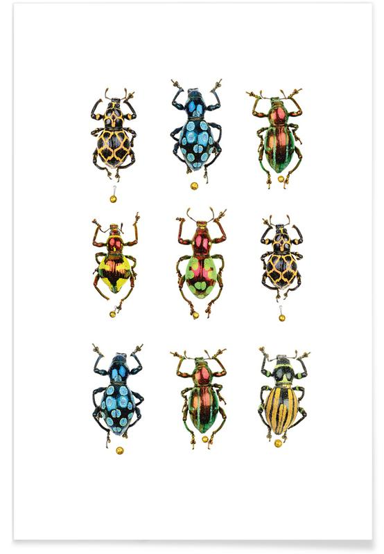 Biller, Insect 4 Plakat