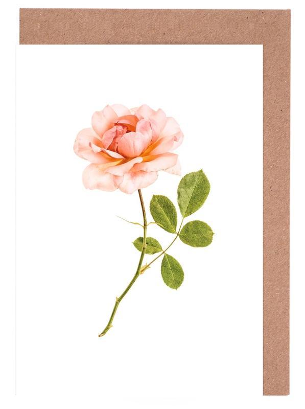 Rose 1 -Grußkarten-Set