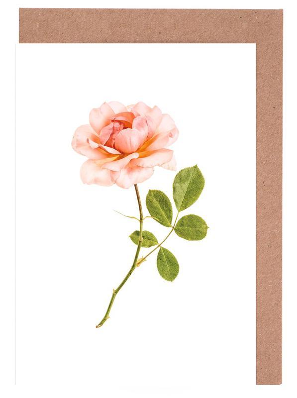 Rose 1 Greeting Card Set