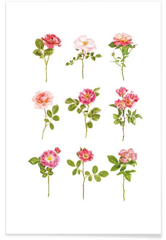 Rozen, Roses 2 poster