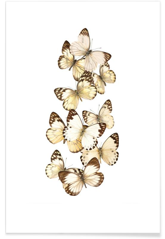 Butterfly 1 poster