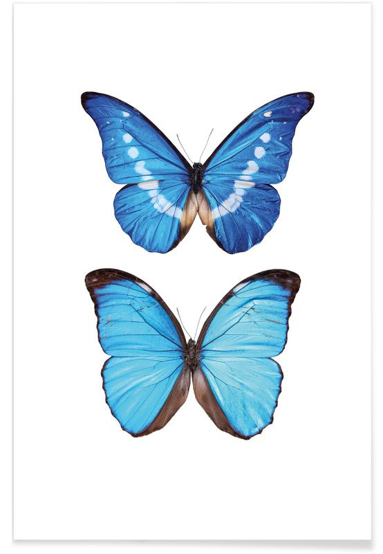Butterfly 5 poster