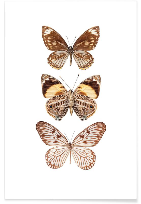 Butterfly 6 -Poster