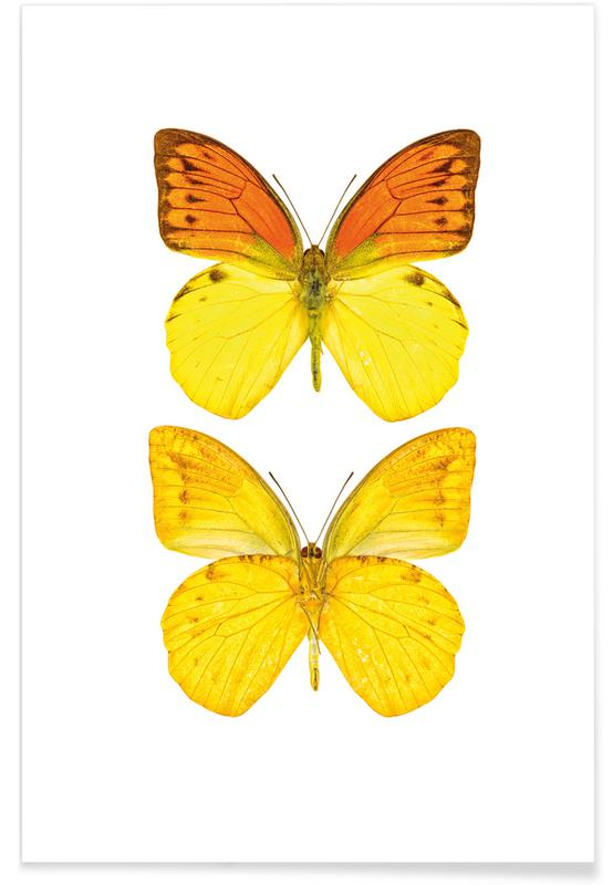 Vlinders, Butterfly 7 poster