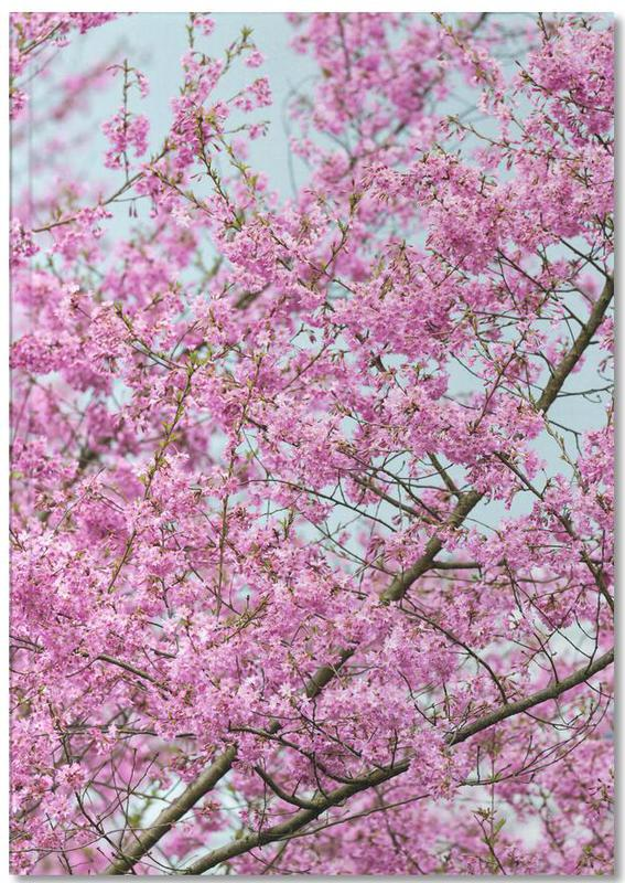 Pink Blossom Notebook