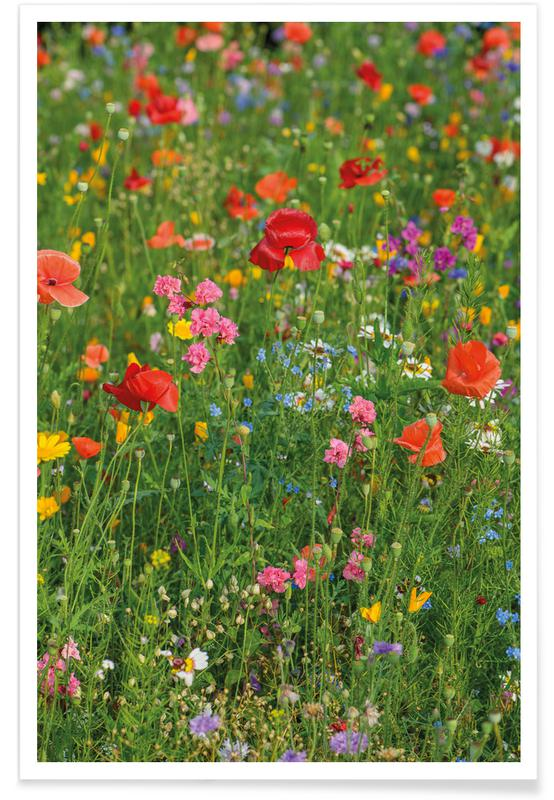 , Wild Flowers Field 2 poster