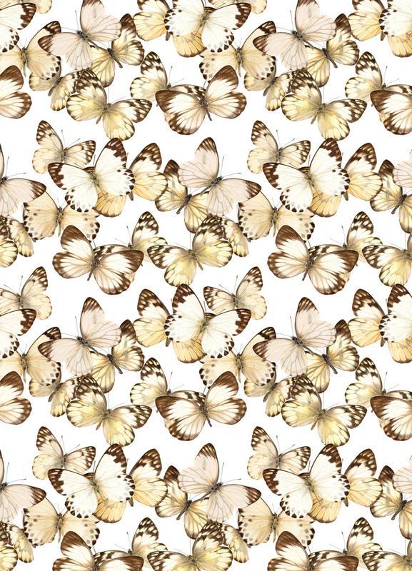 Butterflies -Leinwandbild