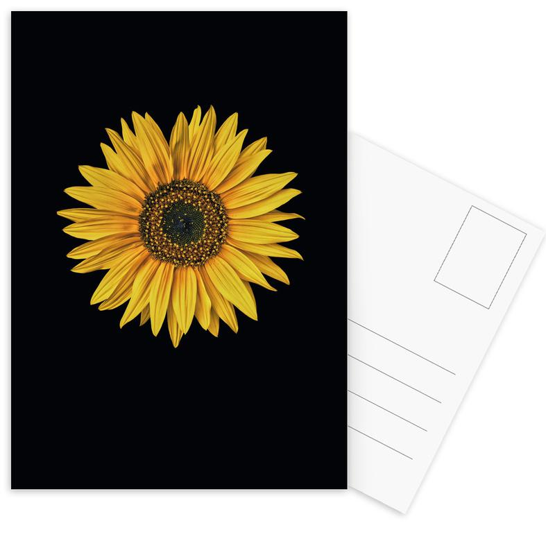 Sunflower -Postkartenset