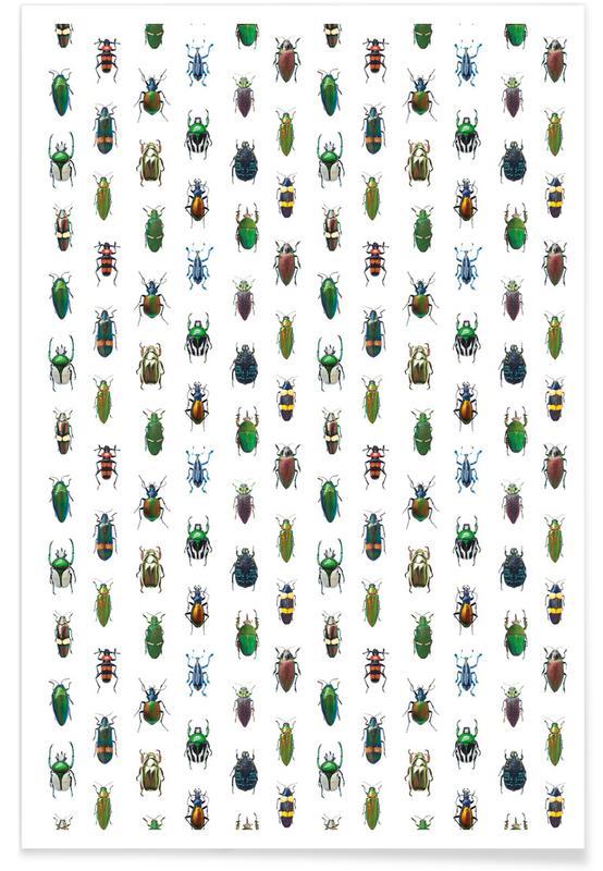 Beetles -Poster