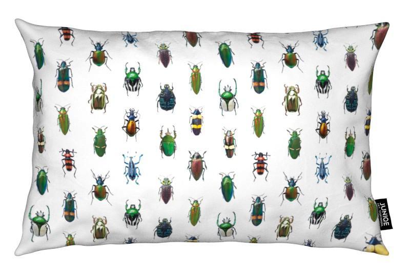 Käfer, Beetles