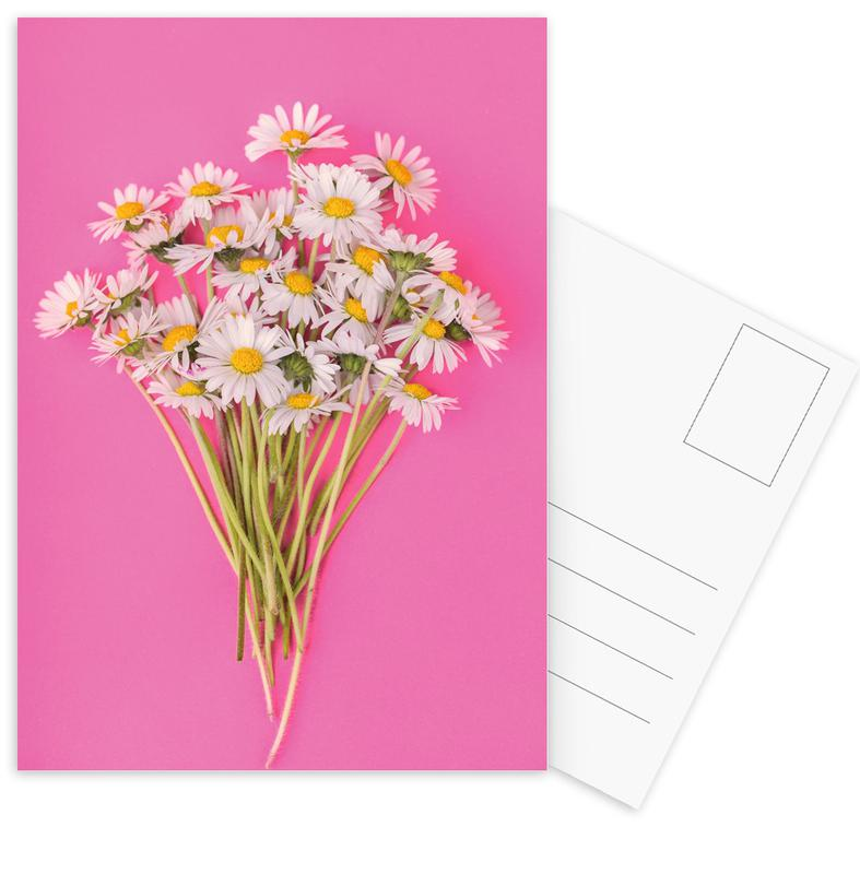 Bouquet of Daisies Postcard Set