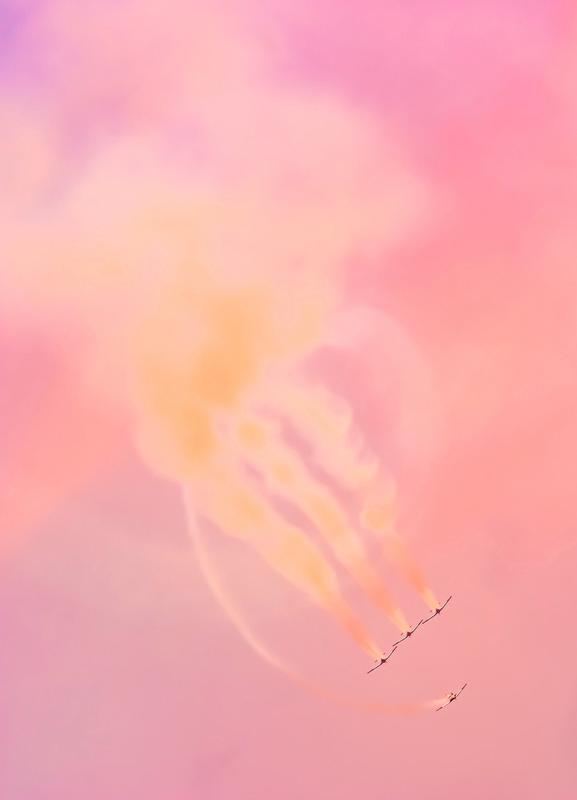 Airborne 2017 canvas doek