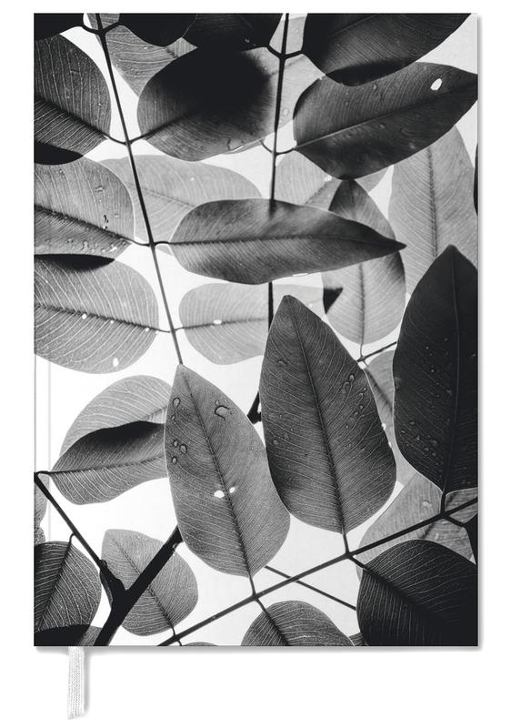 Experiments with Leaves II agenda