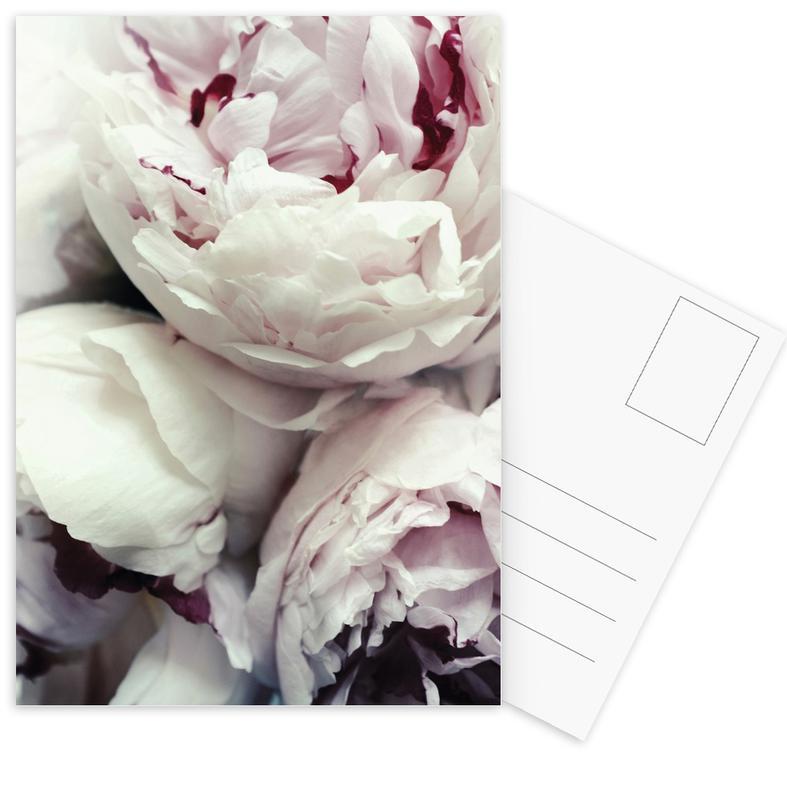 Mariages, Roses, Anniversaires de mariage et amour, Pfingstrosen cartes postales