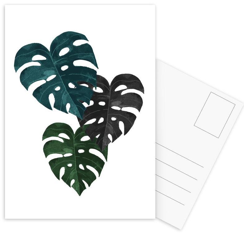 Feuilles & Plantes, Monstera cartes postales