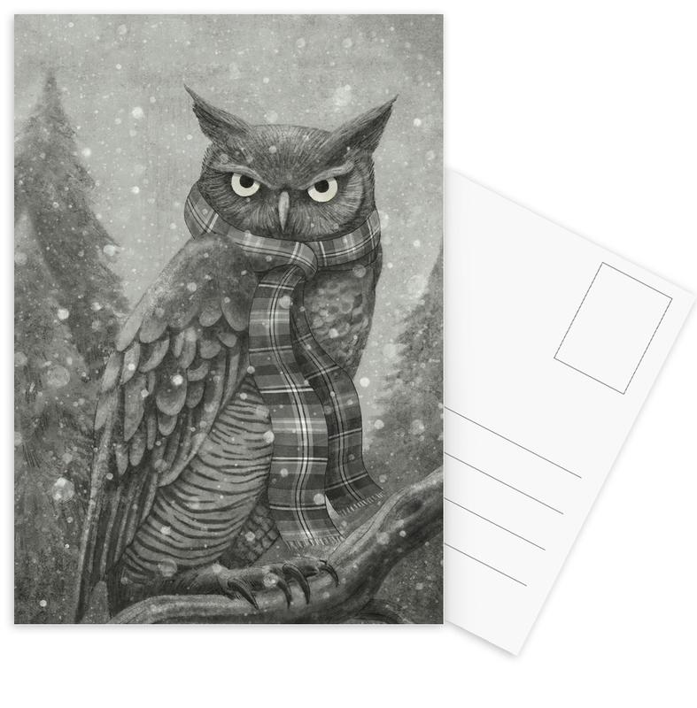 Winter Owl Postcard Set