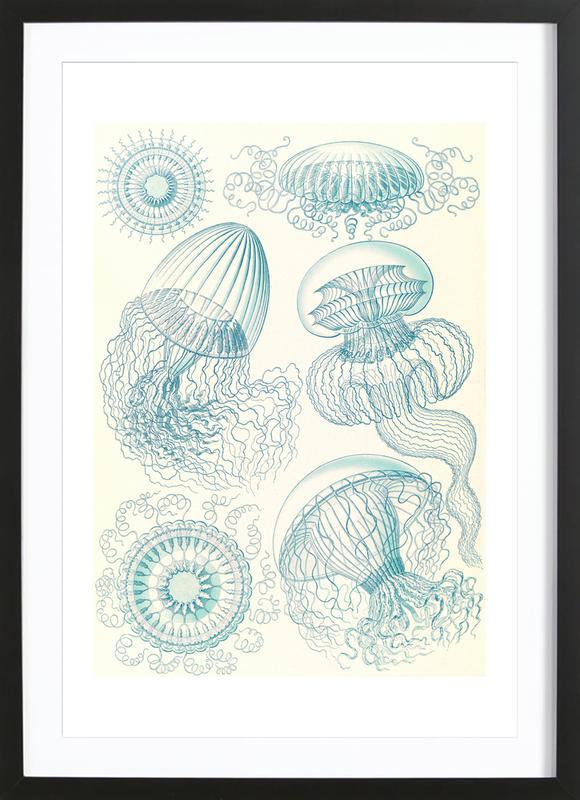 Faltenquallen Framed Print