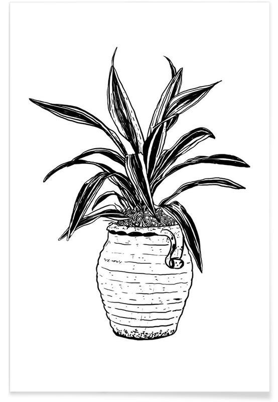 Leaves & Plants, Dracaena Poster