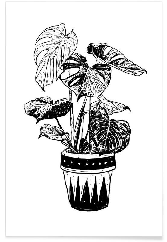 Noir & blanc, Monstera affiche