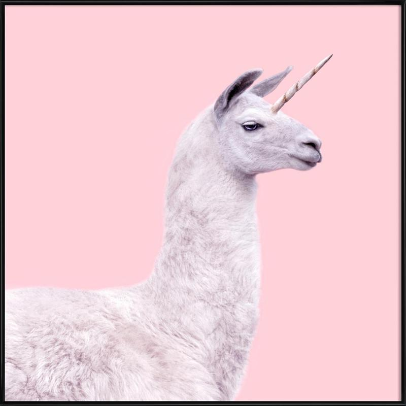 Llama Unicorn -Bild mit Kunststoffrahmen