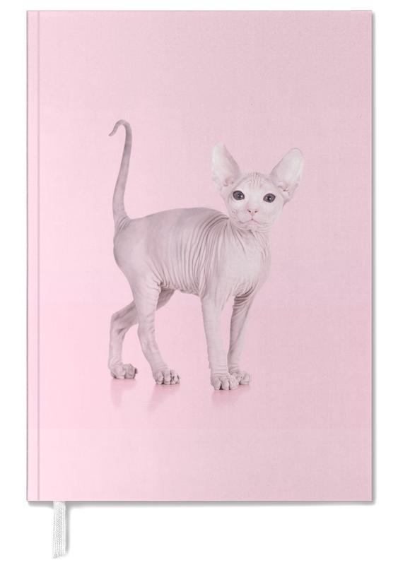 Sphynx Cat -Terminplaner