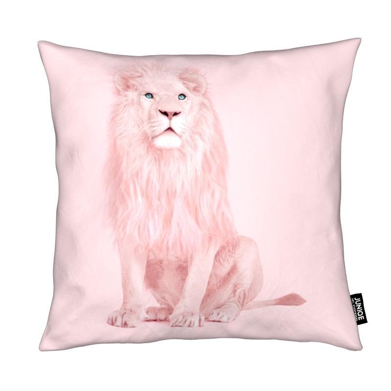 Löwen, Albino Lion