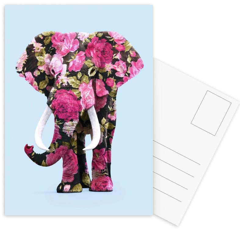 Floral Elephant Postcard Set