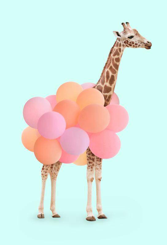 Party Giraffe Aluminium Print