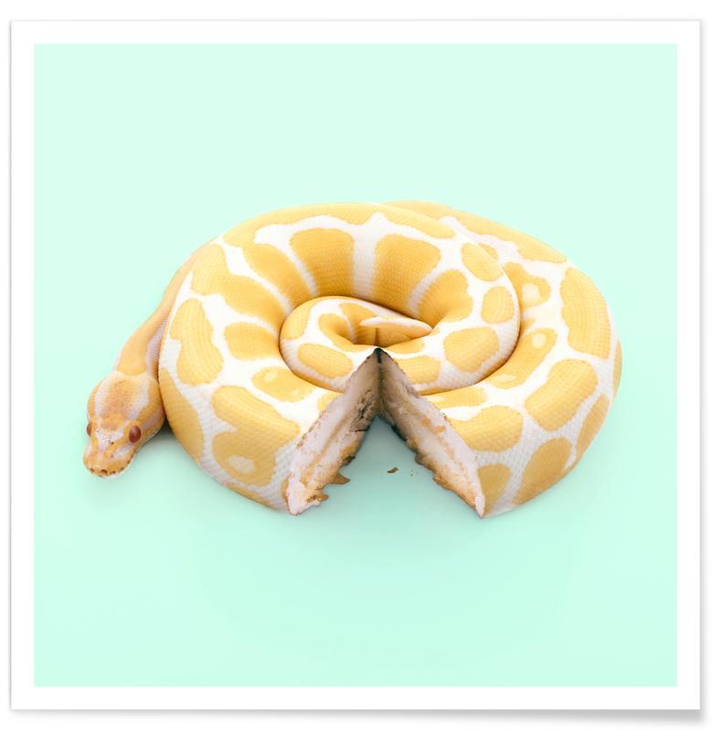 Snake Cake -Poster