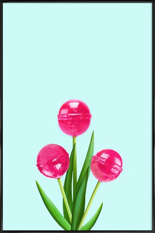 Lollipop Tulips 2 affiche encadrée