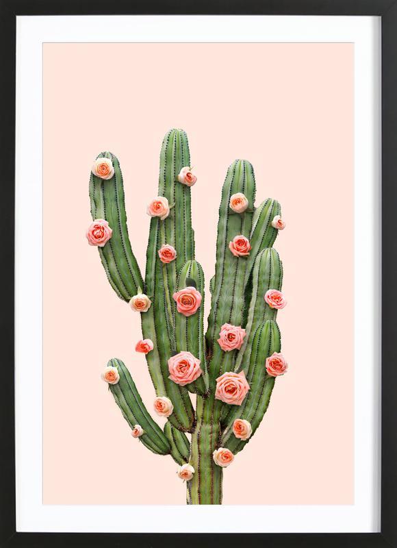 Cactus Roses Framed Print