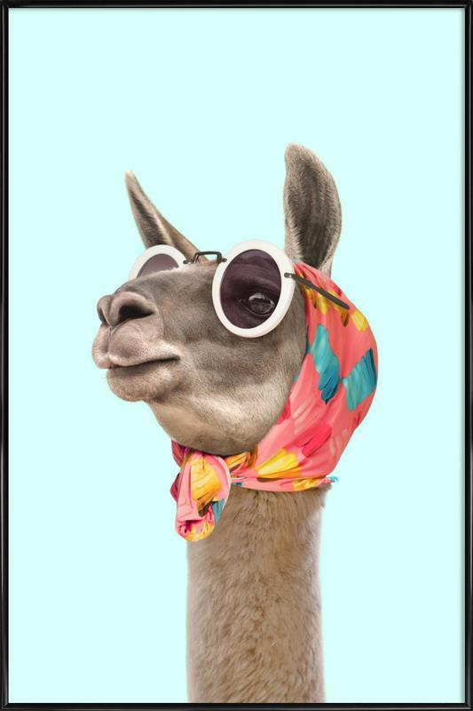 Fashion Llama Poster i standardram