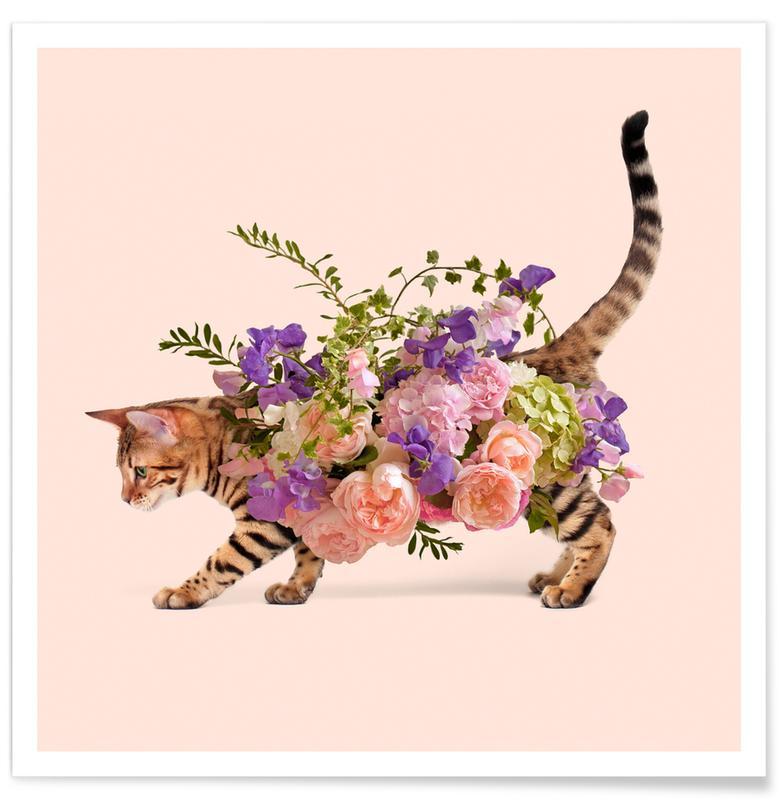 Popart, Taarten, Grappig, Floral Cat poster