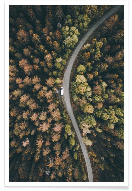 Forest Road Aerial Photograph Plakat
