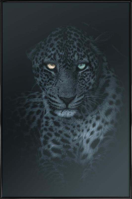 Eyes in the Night Framed Poster