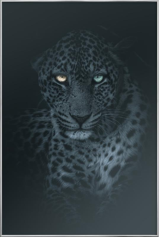 Eyes in the Night Poster in Aluminium Frame
