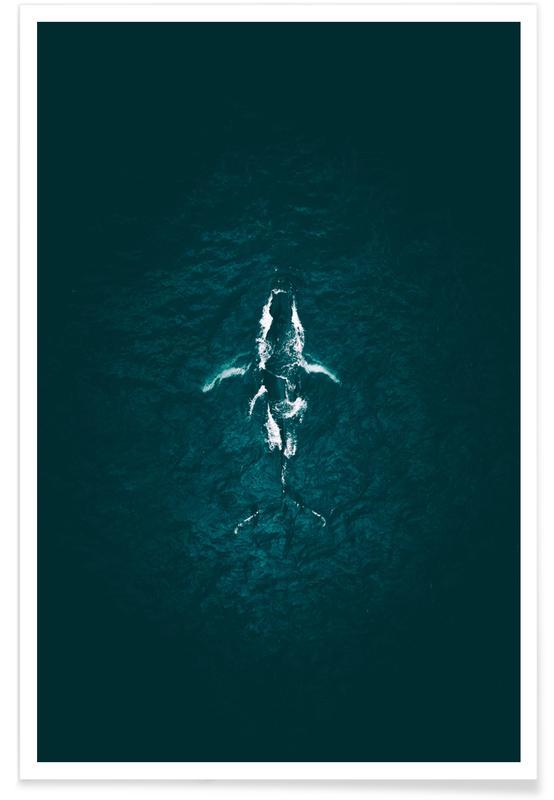 Océans, mers & lacs, Baleines, Humpback Breach affiche